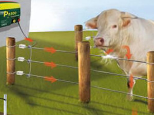 Electric Fencing Example